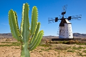 Fuerteventura - mit dem Leihwagen die Schätzte der Insel entdecken